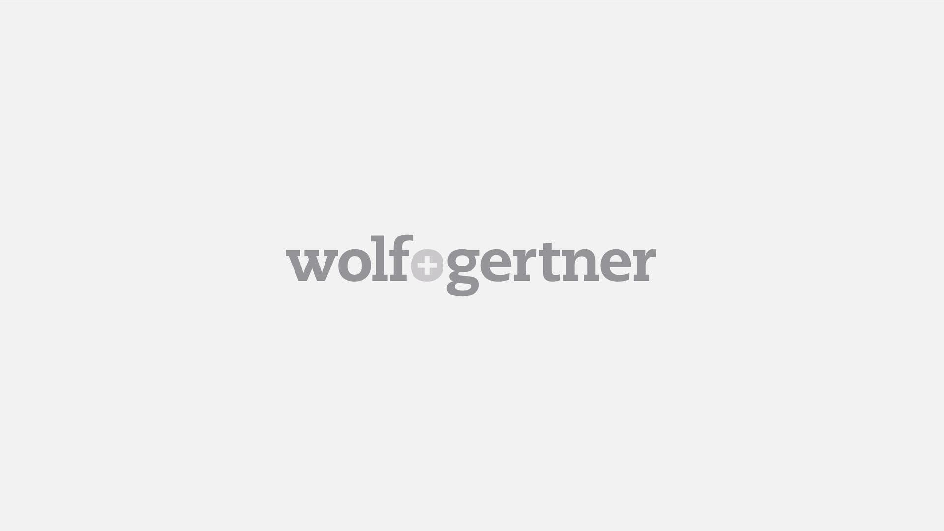 wolf gertner logo